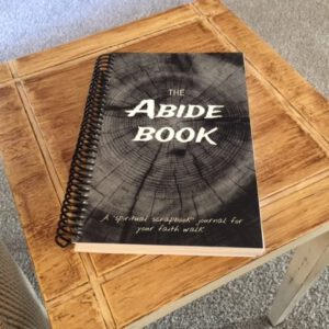 Abide Book journal